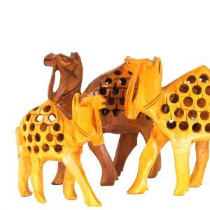 семейство камили