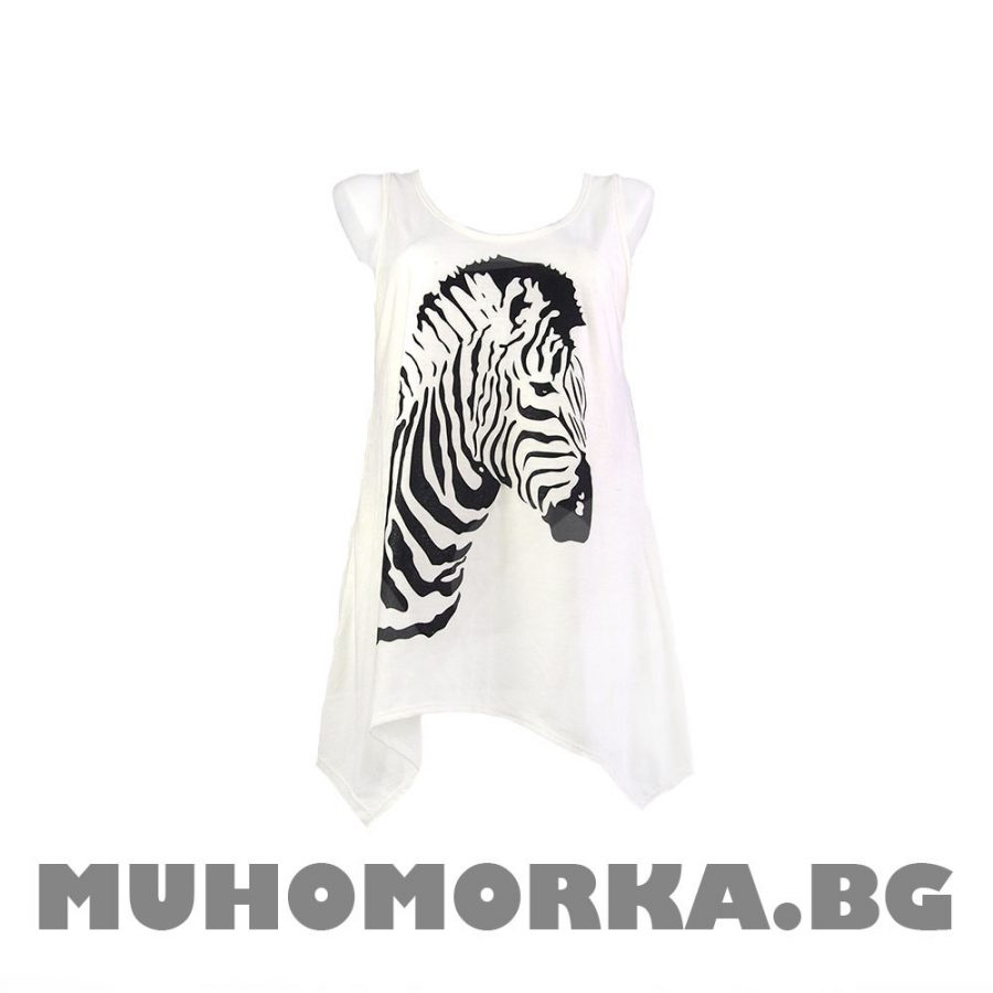 потник зебра